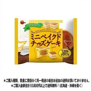 ブルボン 120gミニベイクドチーズケーキ ファミリーサイズ|excel-fukuoka