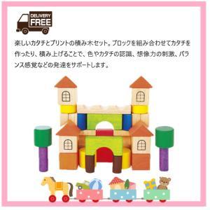 【送料無料】VOILA ベーシックスキルビルダーズ S247-03 木のおもちゃ 積み木|excel-fukuoka