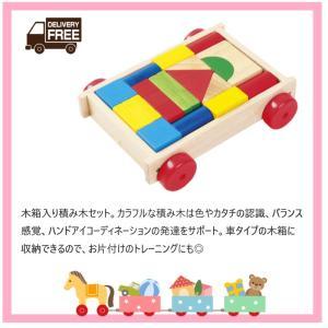 【送料無料】VOILA ベーシックブロックスオンウィールズ S248-01 木のおもちゃ 積み木|excel-fukuoka