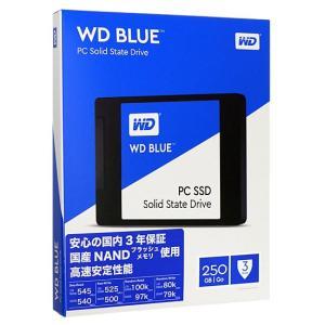 Western Digital製 内蔵SSD 250GB WD Blue WDS250G1B0A|excellar