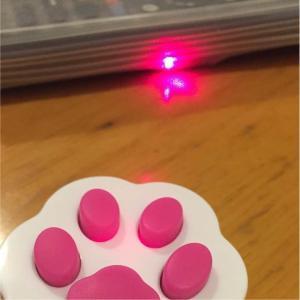ねこ ネコ 猫 遊ぼう レーザー ポインター