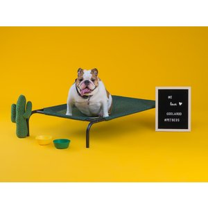 ファブリック ドッグベッド(中型犬用) ペットベッド 犬用ベッド 犬用コット 送料無料|exis