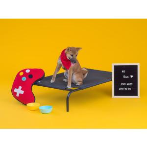 ファブリック ドッグベッド(大型犬用) ペットベッド 犬用ベッド 犬用コット 送料無料|exis