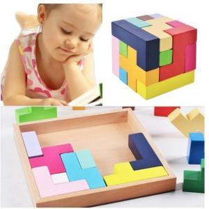 木製知育玩具 形合わせ パズル 立体 テトリス ブロック 木製おもちゃ 玩具 小 送料無料|exlead-japan