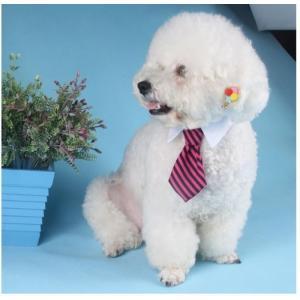 犬 猫 イヌ ネコ ドッグ キャット 首輪 ハーネス アクセサリー ネクタイ ストライプ Sサイズ ピンク×ブラック 送料無料 exlead-japan