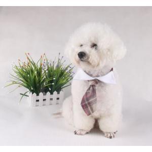 犬 猫 イヌ ネコ ドッグ キャット 首輪 ハーネス アクセサリー ネクタイ タータンチェック 送料無料 exlead-japan