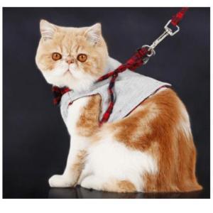 猫 キャット ハーネス コットン 洋服 タイプ XS 送料無料 exlead-japan