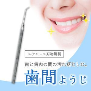 歯科用スケーラ 歯間ようじ シルバー 40438 デンタルケア用品 一般医療機器 歯間ようじ 歯垢取り 除去 ピーティーアンドサヒ 送料無料|exlead-japan