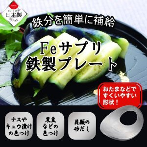 鉄分 補給 貧血 予防 パール金属 Feサプリ 鉄製プレート HB-5000 送料無料|exlead-japan