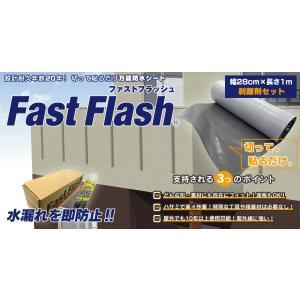 万能防水シート ファストフラッシュ 1m x 28cmサイズ+剥離剤 60ml|expantay|02
