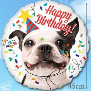 Add バルーン バースデードッグ 35399  誕生日バルーン バルーンギフト バルーン風船 ペット 犬 サプライズ|express