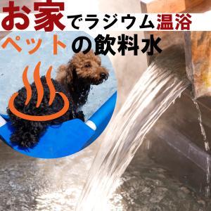 ペット用 飲泉水 飲料水 化粧水 濃縮 ラジウム 温泉 純天然稀元水 10リットル お家 で ラジウム温泉 犬 猫 ラドン ホルミシス 免疫力 ガン サバイバー アトピー|express