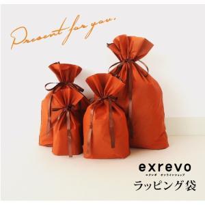 ギフトラッピング ラッピング袋 ギフト 贈り物 卒業祝 成人式 誕生日 バースデー exrevo-2