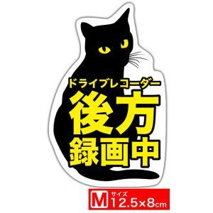 Exproud製 ドライブレコーダー後方録画中 黒ネコ見返り...