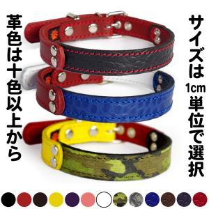 首輪 中型犬用  革 2cm幅:2cm Type FB  【色は十色以上から、サイズは1cm単位でオーダー】|extraheavyy