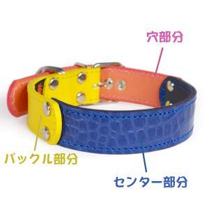 首輪 中型犬用  革 3cm幅:3cm Type FB  【色は十色以上から、サイズは1cm単位でオーダー】|extraheavyy|03