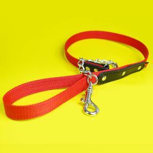 リード 革 PPテープ チェーン:2cm幅の中形犬用PPチェーンリード 001|extraheavyy