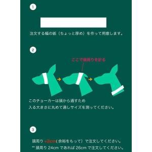 ハーフチョーク イタグレ ミニピン 革:Small Type Choker E002【色は10色以上から、サイズは1cm単位でオーダー】 extraheavyy 04