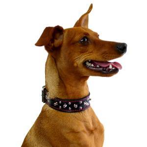首輪 小型犬用 スタッズ 革 2cm幅:Small Type G5-003(8mm+4mm丸鋲) *色は十色以上から、サイズは1cm単位でオーダー|extraheavyy|04