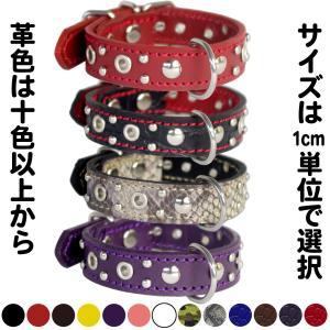 2cm幅の小型犬用スタッズ革首輪:Small Type G5-004(ハトメ+4mm丸鋲) *色は十色以上から、サイズは1cm単位でオーダー|extraheavyy