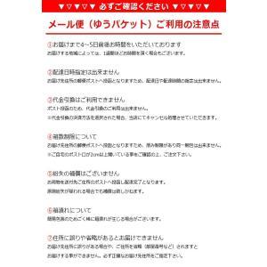 ハードコンタクトレンズ アイミー サプリーム (2枚) Aime メール便送料無料 (代引不可) eyemedic 03