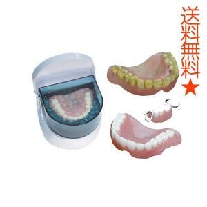 入れ歯 超音波洗浄機 Dr.Agクリーン 送料無料 ケース|eyshopnet
