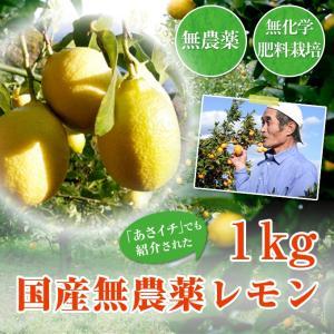 【訳あり】国産無農薬レモン1kg前後【クール便】(国産 広島県 ノーワックス 防カビ剤不使用)