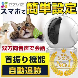 家族を見守るためのネットワークカメラ(ペットカメラ)「C6CN」が新発売。 学校や職場などの外出先か...