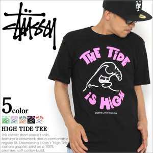Stussy ステューシー Tシャツ メンズ 半袖 stussy tシャツ 半袖 Tシャツ メンズ ステューシー|f-box