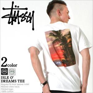 ステューシー (STUSSY) Tシャツ メンズ ブランド ステューシー Tシャツ STUSSY Tシャツ 大きいサイズ メンズ Tシャツ|f-box