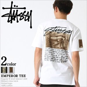 STUSSY ステューシー tシャツ メンズ 半袖 大きいサイズ メンズ 半袖tシャツ stussy tシャツ メンズ 半袖 プリント ロゴ|f-box