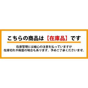 日本整備製 トーインゲージ TG-X (100〜1,800mm) 認証工具|f-depot|05