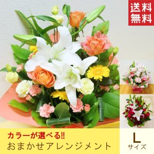 アレンジメント「カラー指定おまかせアレンジメントL」 送料無料 プレゼント ギフト 花 誕生日 お祝い 母の日 父の日 敬老の日 記念日|f-hanasyou