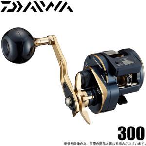 ダイワ 21 ソルティガ IC 300 (右ハンドル) 2021年モデル/ベイトリール/ジギング /(5) f-marunishiweb2nd