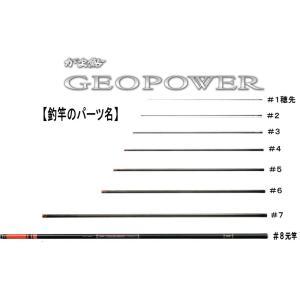 23432951kがま鮎ジオパワー荒瀬95 #1k(替え穂先...