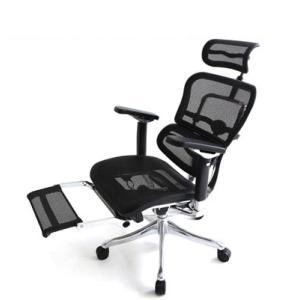 オフィスチェアー エルゴヒューマンプロH オットマン内蔵型 3dファブリック、エラストメリック・メッシュ12色対応 F f-room