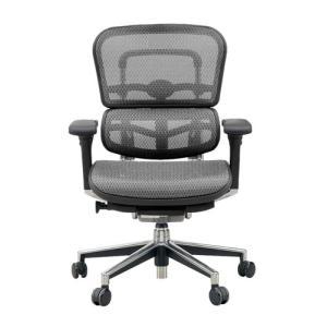 オフィスチェアー エルゴヒューマンベーシックL ファブリックメッシュ、江ラストメリックメッシュ 全12色対応 f-room