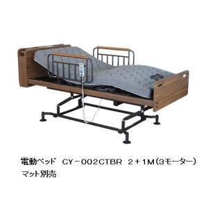 アンネル電動ベッド RY-002CT 2+2M ティッシュBOX/コンセント付棚付きタイプ 2色対応 別売キャスター マットレス別売 開梱設置送料無料 f-room