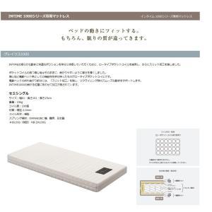 パラマウント インタイム1000専用マット グレイクス1000 RB-ZA100G ※ベッドと同時購入する場合のみ非課税 送料無料 北海道・沖縄・離島は除く|f-room