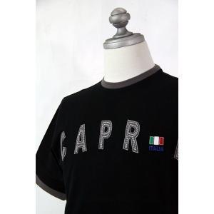 SS63%OFF◆f-shop◆カプリ★52サイズ★半袖Tシャツ3231-2523-2  HT*3L|f-shop1975