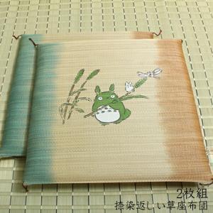 純国産 捺染返し い草座布団 2枚組 約55×55cm×2P|f-syo-ei