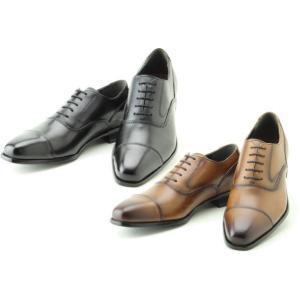 (B倉庫)madras マドラス MDL DS4061 メンズビジネスシューズ ロングノーズ ストレートチップ レースアップ 紳士靴 革靴 本革|fa-core