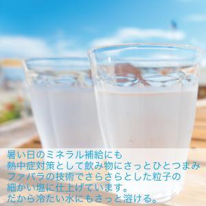 塩の味(しおのみ) 万能に使えるお塩|fabala|06