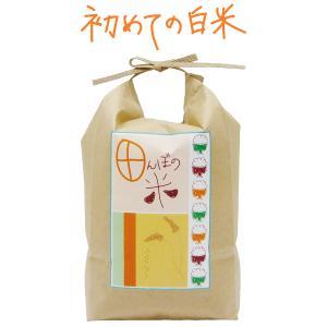 田んぼの米 2kg 昔懐かしいお米の味|fabala