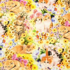 生地 50cm単位 シーチング インクジェット 子猫とお花 LGA-21070-2 布 コッカ デジタルプリント動物 花柄 J-QPT|fabrichouseiseki