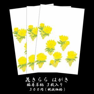 年賀 はがき 寒中見舞いハガキ 和紙年賀状  和風【花きらら...