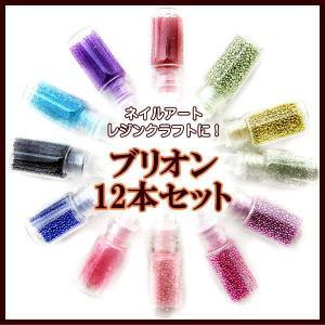 カラーブリオン 12本セット ミニボトル入り fairy-lace