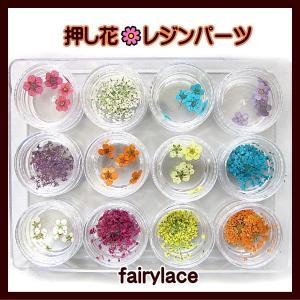 押し花 レジン レジンパーツ|fairy-lace