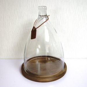ガラスドーム ガラスケース ディスプレイドーム ダルトンドームDM 木製台座付き Mサイズ|fairy-land