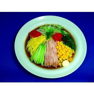 冷し中華麺 食品サンプル|fakefoodjapan
